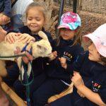 Les élèves de moyenne section visitent le zoo «Cocodrilo Park»