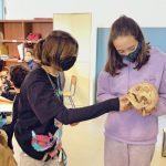 Proyecto «Guías por un día en el Museo Canario»